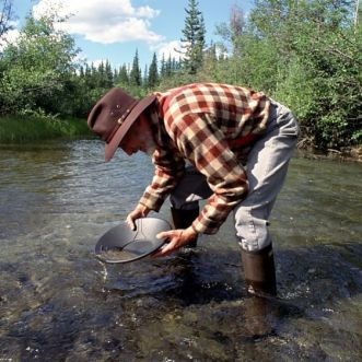 Gold Panning in a river near Fairbanks